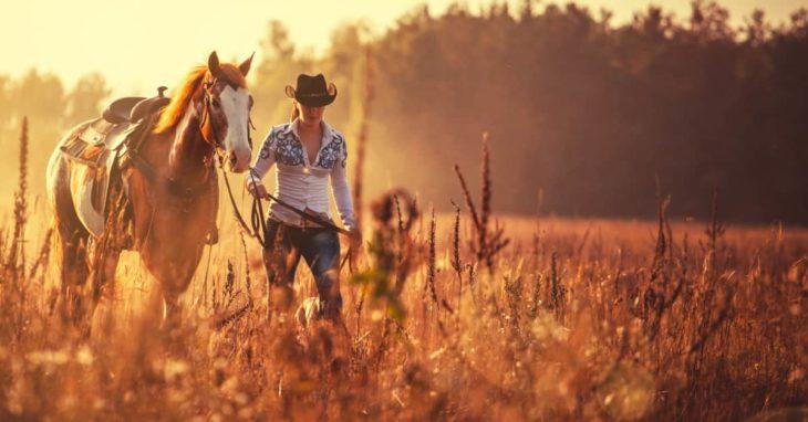 7 Reasons Your Horse Trailer Needs Wood Flooring
