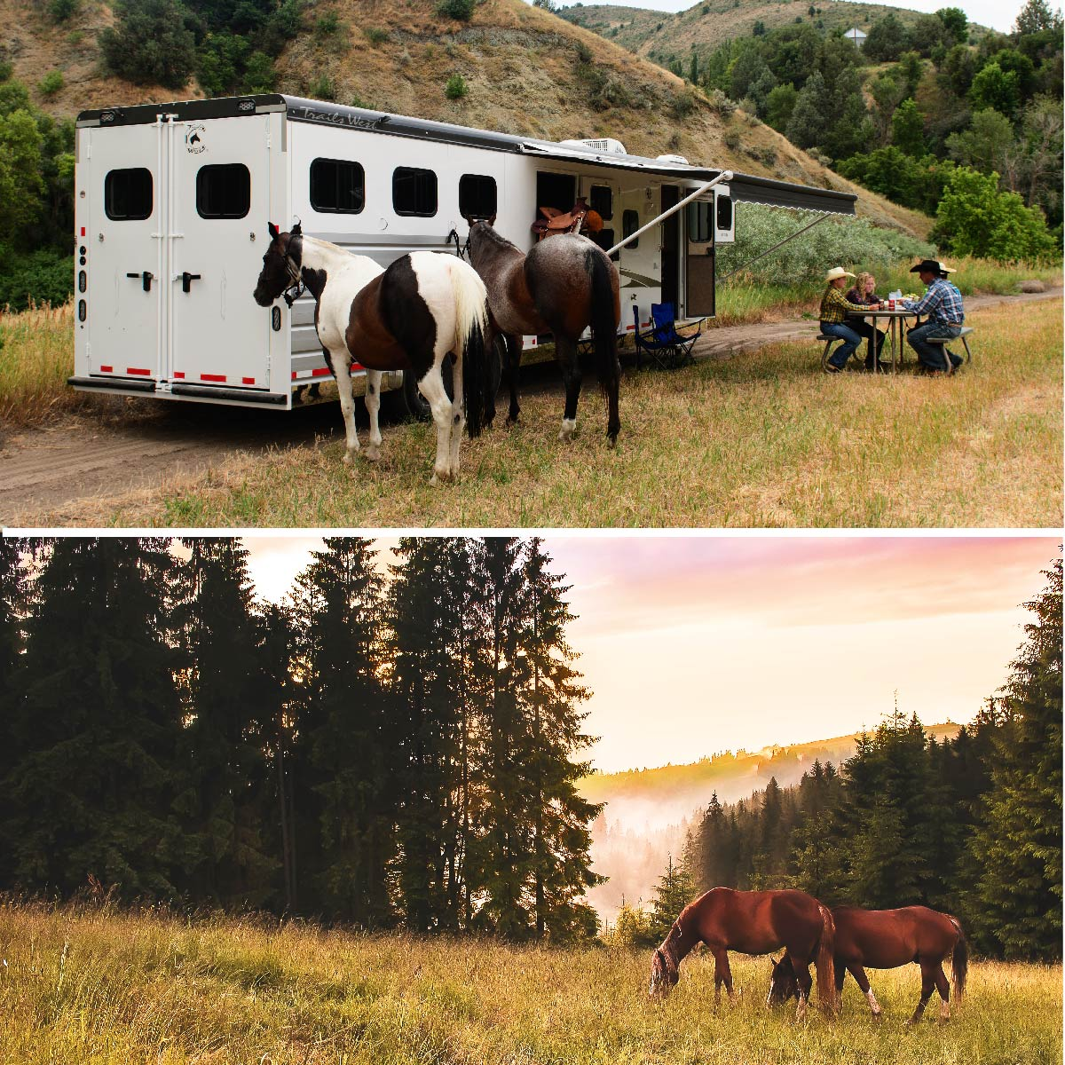 Living Quarters Horse Trailer - Scene 1