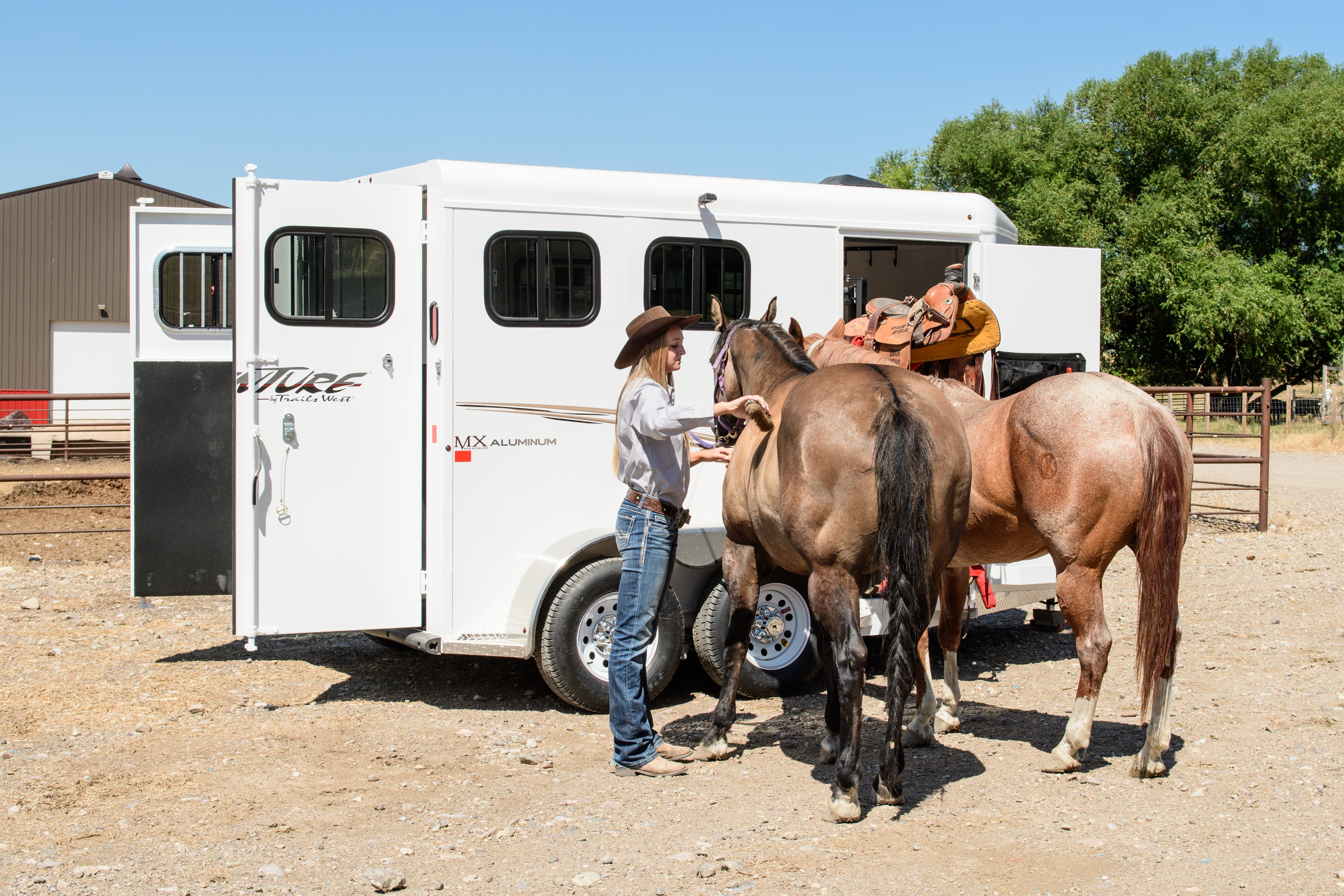 Top Factors to Consider When Buying a Horse / Cattle Trailer
