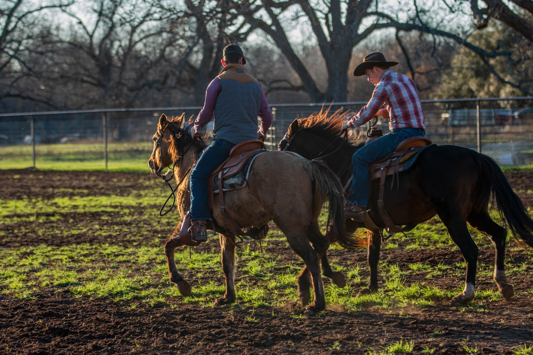 two-cowboys-riding-horses-in-field-near-chain-link-fence