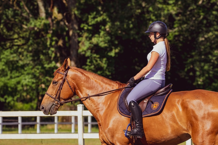 2021 New Year's Resolutions for Competitive Riders